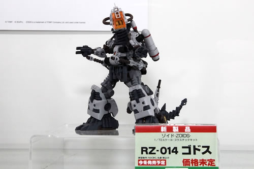 Wonder Festival 2011 (Summer Edition) (163)