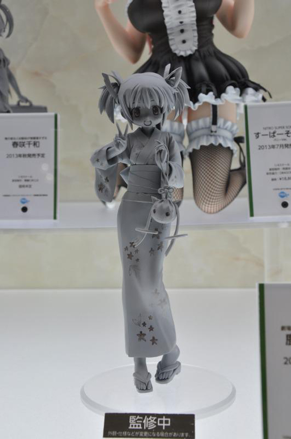 Wonfes 2013 Winter Coverage (11)