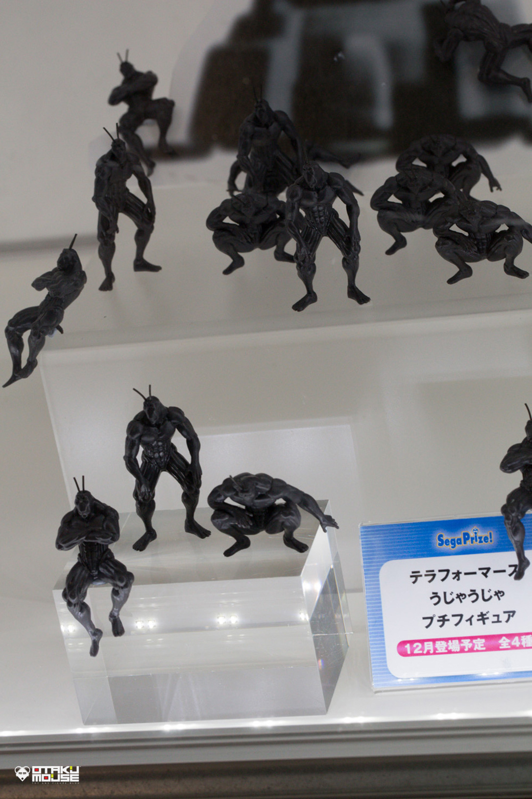 The Ultimate Wonfes 2014 Summer Coverage [Corporate Booth]   Part 8 (4)