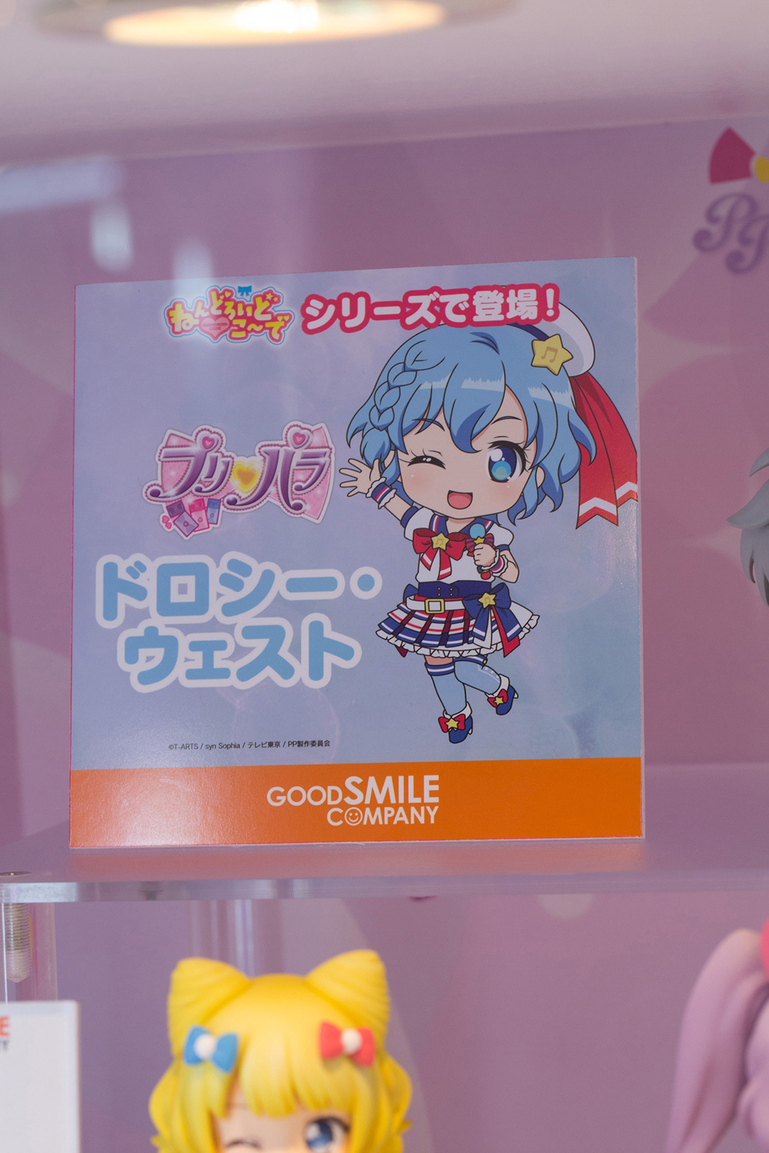 The Ultimate Wonfes 2015 Winter Coverage | Part 9 (16)